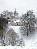 zima koronkowa Zdjęcia Royalty Free