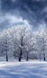 zima kraina cudów Obrazy Royalty Free
