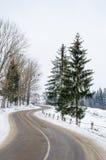 Zima krajobraz, śnieg zakrywał drogę w górach z drzewami Obraz Royalty Free