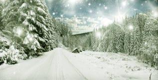 Zima krajobraz - śnieg zakrywał drzewa i niebo z gwiazdami Fotografia Stock
