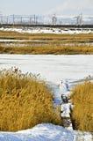 Zima krajobraz 17 Fotografia Royalty Free