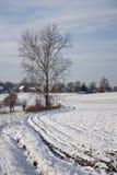 Zima krajobraz - 02 Zdjęcia Stock
