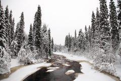 Zima krajobraz Obraz Stock