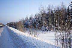 Zima krajobraz. Zdjęcia Royalty Free