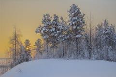 Zima krajobraz. Obraz Royalty Free