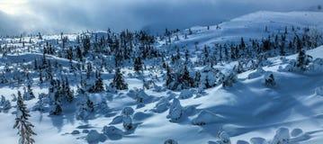 Zima krajobraz Zdjęcia Royalty Free