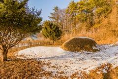 Zima krajobraz anonimowy pogrzeb zdjęcie royalty free