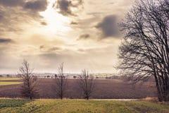 Zima krajobraz bez śniegu Zdjęcie Royalty Free