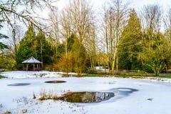 Zima krajobraz częsciowo marznący staw w Campbell doliny parku Zdjęcie Stock