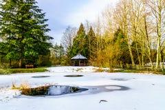 Zima krajobraz częsciowo marznący staw w Campbell doliny parku Obrazy Stock