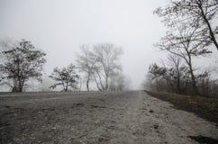 Zima krajobraz drzewo sylwetki dorośnięcie blisko drogi I wokoło otaczająca mgła Droga Sheki, Azerbejdżan obraz stock