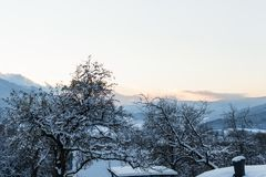 Zima krajobraz mroźni drzewa w zima lesie w zima ranku Zima krajobraz z śnieżnymi zim drzewami Obraz Royalty Free