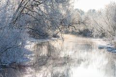 Zima krajobraz - mroźni drzewa i rzeka w pogodnym ranku zdjęcia stock