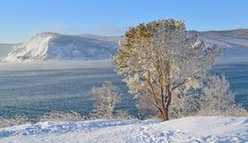 Zima krajobraz na jeziornym Baikal, Syberia, Rosja Obraz Stock