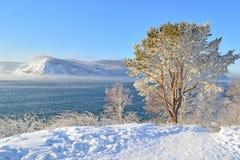 Zima krajobraz na jeziornym Baikal, Syberia, Rosja Zdjęcia Stock