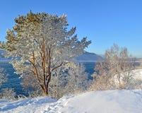 Zima krajobraz na jeziornym Baikal, Syberia, Rosja Zdjęcie Stock