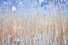 Zima krajobraz, śnieg, molo na jeziorze Obrazy Royalty Free
