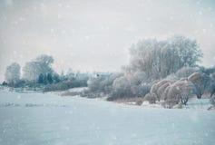 Zima krajobraz w śnieżnej naturze Zdjęcie Royalty Free