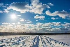 Zima krajobraz w backlight Obraz Royalty Free