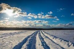 Zima krajobraz w backlight Obrazy Royalty Free