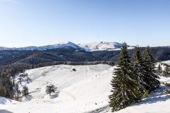 Zima krajobraz w Ciucas górach, Rumunia zdjęcia royalty free