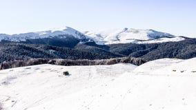 Zima krajobraz w Ciucas górach, Rumunia fotografia royalty free