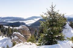 Zima krajobraz w Ciucas górach, Rumunia zdjęcie stock