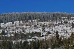 Zima krajobraz w górach 2 Zdjęcia Royalty Free