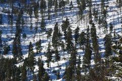 Zima krajobraz w górach 3 Fotografia Royalty Free