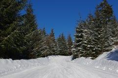 Zima krajobraz w górach 9 Obrazy Stock