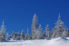 Zima krajobraz w górach 10 Zdjęcia Stock