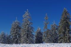 Zima krajobraz w górach 18 Fotografia Stock