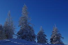 Zima krajobraz w górach 20 Zdjęcia Royalty Free