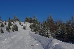 Zima krajobraz w górach Zdjęcie Royalty Free