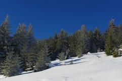 Zima krajobraz w górach 23 Fotografia Stock