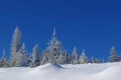 Zima krajobraz w górach 22 Zdjęcia Stock