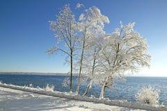 Zima krajobraz w górnym Bavaria Obraz Royalty Free