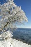 Zima krajobraz w górnym Bavaria Fotografia Royalty Free