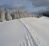 Zima krajobraz w Karpackich górach Zdjęcia Stock