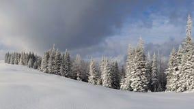 Zima krajobraz w Karpackich górach Zdjęcie Stock