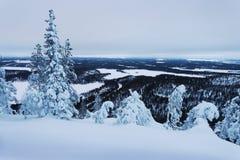 Zima krajobraz w Lapland obrazy royalty free