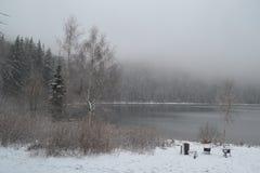 Zima krajobraz W mgle Obraz Stock