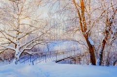 Zima krajobraz w roczniku tonuje zim mroźnych drzewa i śnieżnego zimy żelaza most w zima parku - Obraz Stock