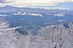 Zima krajobraz w Slovenia, Zasavje Zdjęcia Royalty Free