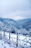 Zima krajobraz z śnieżnymi drzewami i ogrodzeniem fotografia stock