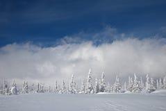 Śnieżny krajobraz obrazy royalty free