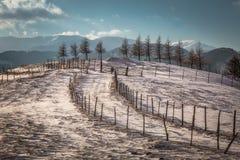 Zima krajobraz z górami w Transylvania obrazy royalty free