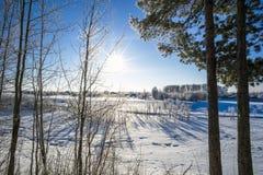 Zima krajobraz z jaskrawym słońcem Zdjęcia Stock