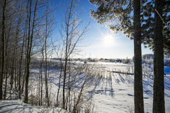 Zima krajobraz z jaskrawym słońcem Fotografia Royalty Free