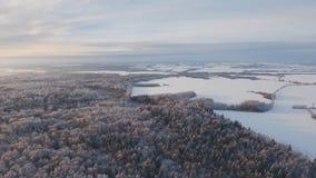 Zima krajobraz z lasem, pole Styczeń 33c krajobrazu Rosji zima ural temperatury Obrazy Royalty Free